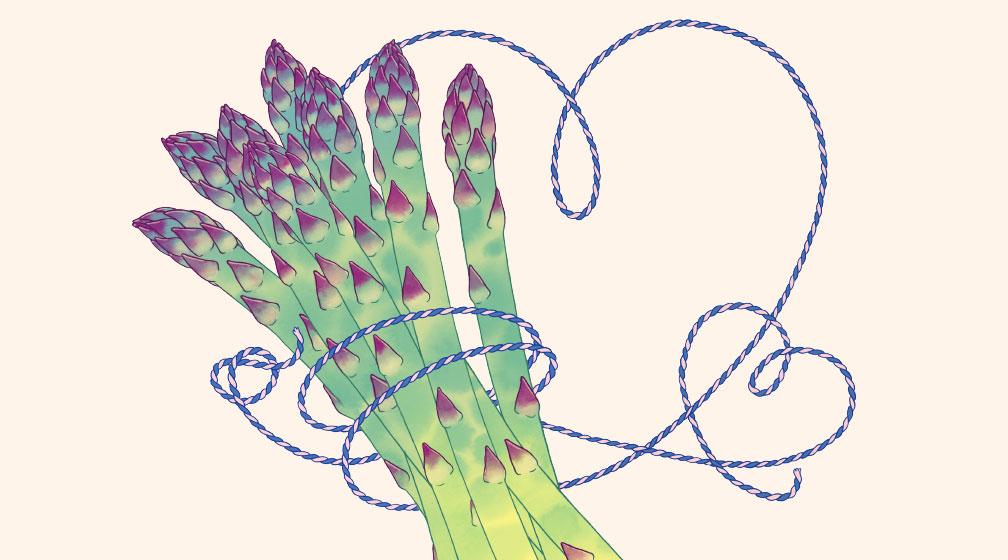 Rakkaudesta parsaan